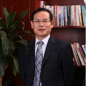 Dingbo Qin (Deputy Director-General of Chongqing Municipal Commission of Culture and Tourism Development)