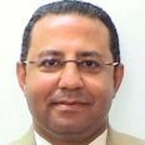 Ahmed Eiweida (Global Lead for Cultural Heritage and Sustainable Development at World Bank)